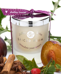 Spiced Plum Med Candle