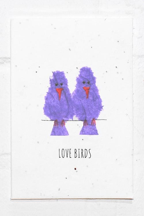 Love Birds - Wedding - Engagement - Anniversary Eco Card