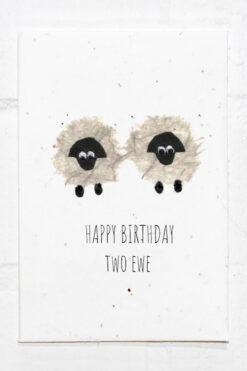 Sheep Birthday Eco Card